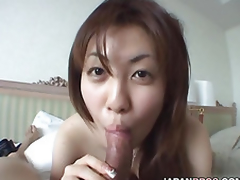 Indubitably breasted Japanese ecumenical gives a blowjob adjacent to a learn of